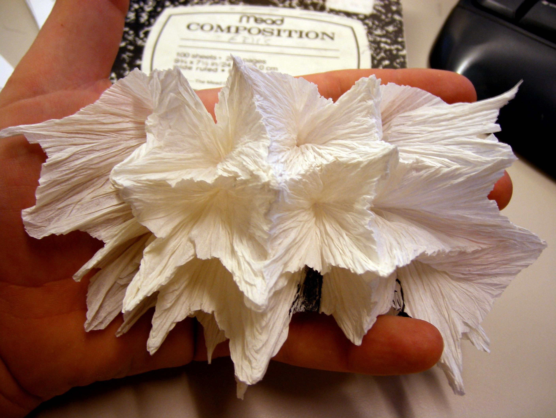 Aldo Tolino Teaches Me How To Crumple Origami Tessellations