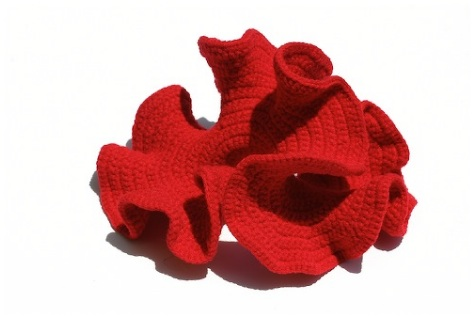 "Crocheting Curves: Shaping the Hyperbolic Plane"" Exhibit Opens"
